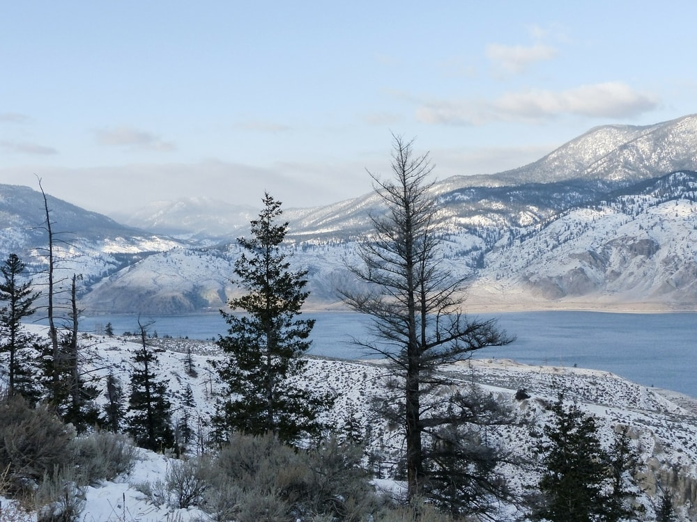 beautiful kamloops is great for business